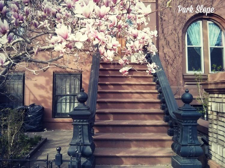 ParkSlope3